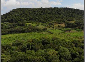 etesa-participa-en-la-elaboracionl-plan-manejol-area-protegidanominada-reserva-hidrica-cerrezuela